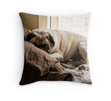 Cozy Pug Throw Pillow