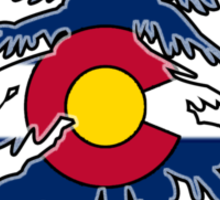 Colorado Forest Sticker