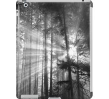 Light Must Have It's Way iPad Case/Skin