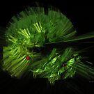 Green leaf by Ingrid Funk
