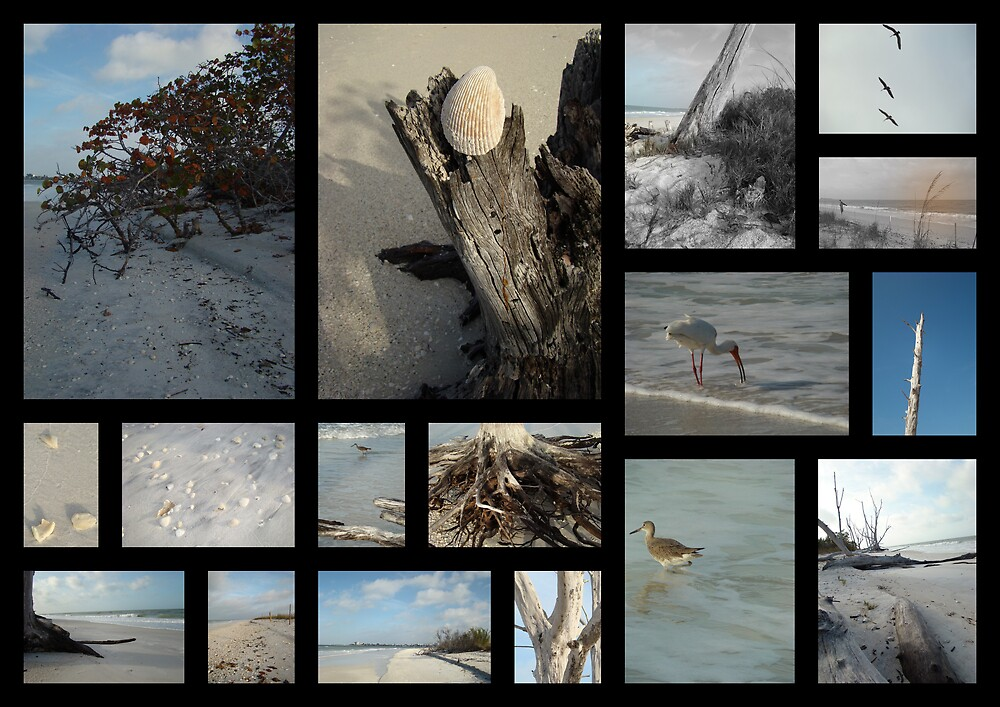 Beach Montage.... : Lovers Key  by Isa Rodriguez