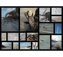 Beach Montage.... : Lovers Key  Photographic Print