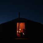 Goodnight Gobi by ardwork