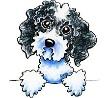 Black Parti Cockapoo Lined Up Photographic Print