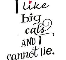 I like big cats and I cannot lie by deborahsmith