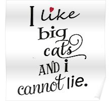 I like big cats and I cannot lie Poster