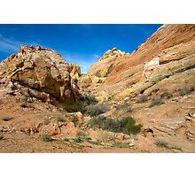 Along a Short Hike Photographic Print