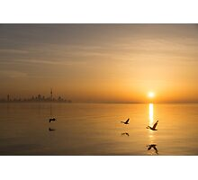 Wings at Sunrise - Toronto Skyline With Flying Geese Photographic Print