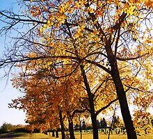 One Fall Day by MommaKluyt