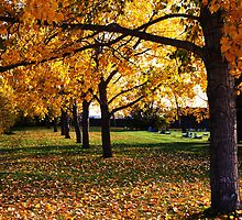 Autumn by MommaKluyt