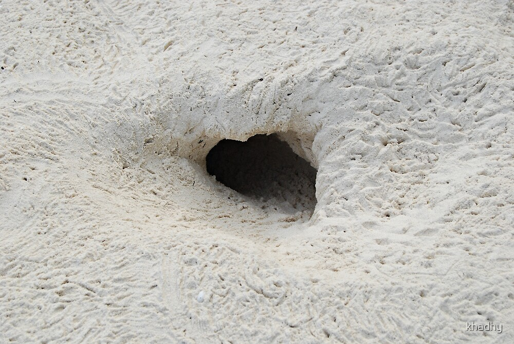 Crab hole by khadhy