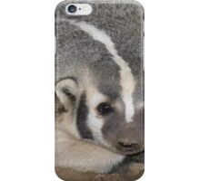 (sow) American badger iPhone Case/Skin