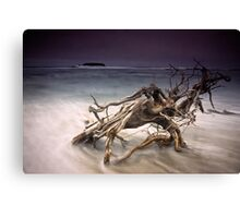Tangled Surf Canvas Print