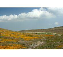 Antelope Valley Photographic Print