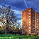 The Lawn by Nigel Bangert