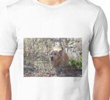 Jotun- COMING!!!! -15 Unisex T-Shirt