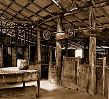 Orroral Shearing Shed Sepia by Steven  Agius