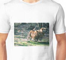 Ramses & Jotun Best Buds- 15 Unisex T-Shirt