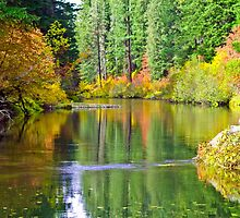 River Bend by Diane Schuster