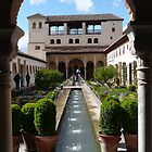 Generalife - Spain by louise1876