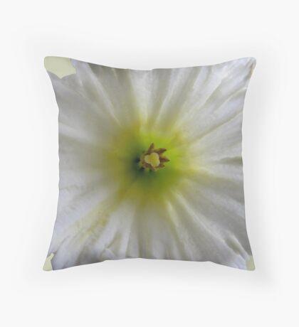 Centre-Piece Throw Pillow