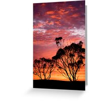 Sunrise delight Greeting Card