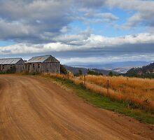 Picker's huts by Chris Cobern