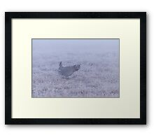 Prairie Chicken 2-2015 Framed Print