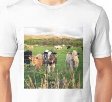 Calves of Llanfairfechan Unisex T-Shirt