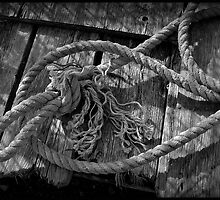 Old  Rope on Float by Dave  Higgins