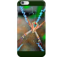 St Andrew's Cross Spider (female). iPhone Case/Skin