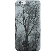 It's Always Snowy in Nova Scotia iPhone Case/Skin