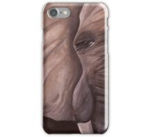 Wise Eyes  iPhone Case/Skin