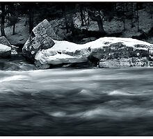Spring Runoff by Dave  Higgins