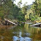 Victorian Alps - Crooked River Crossing by George Petrovsky