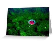 Ocean Gardens Greeting Card