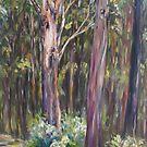 Blackbutt tree by Terri Maddock