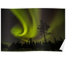 Northern light in Finland Poster