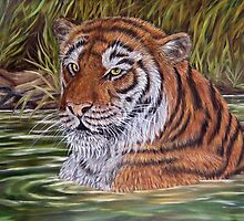 """Tiger Pool"" - Oil Painting by Avril Brand"