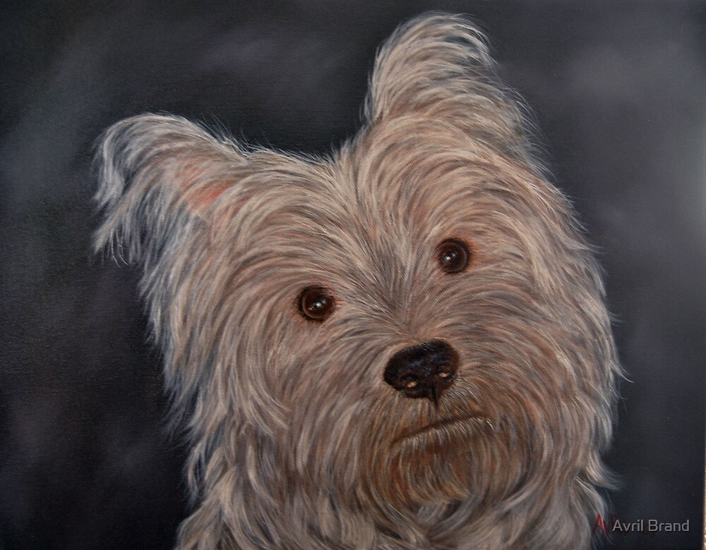 """Portrait of Boetie"" - Oil Painting by Avril Brand"