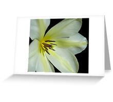 Spring Bride Greeting Card