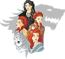 The Many Faces of Sansa Stark by luterocleric