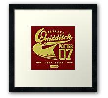Potter Quidditch 07 Framed Print
