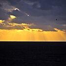 sunrise 4/15/15 by kailani carlson