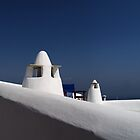 Blue & White by Mariamel