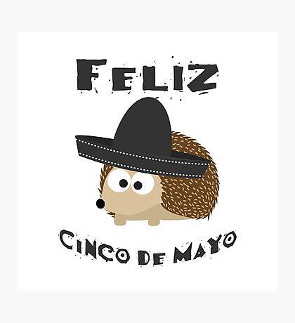 Feliz Cinco De Mayo Hedgehog Photographic Print