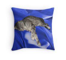 A Touch of Blue Silk Throw Pillow