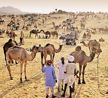 Pushkar, India #2 by Mauricio Abreu
