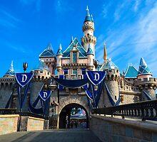 60 Years of Magic by DisneyDarlings
