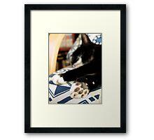 Kissy Paws Framed Print